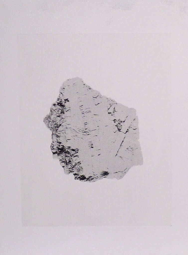 Fossil, 2015.