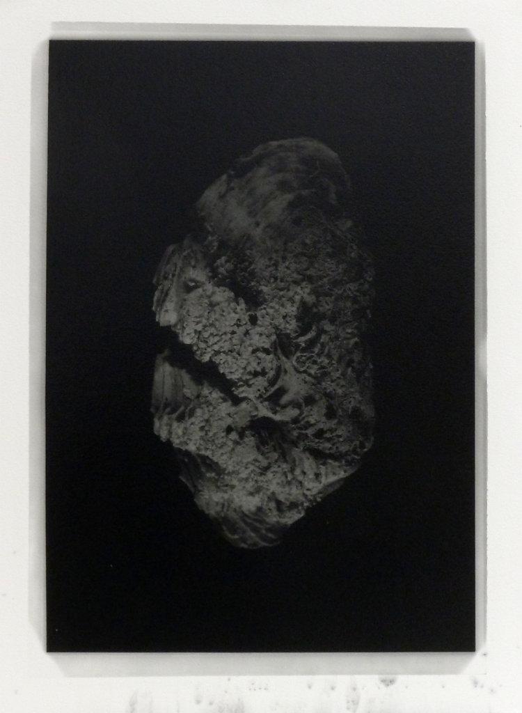 Dark clam (exterior), 2016.