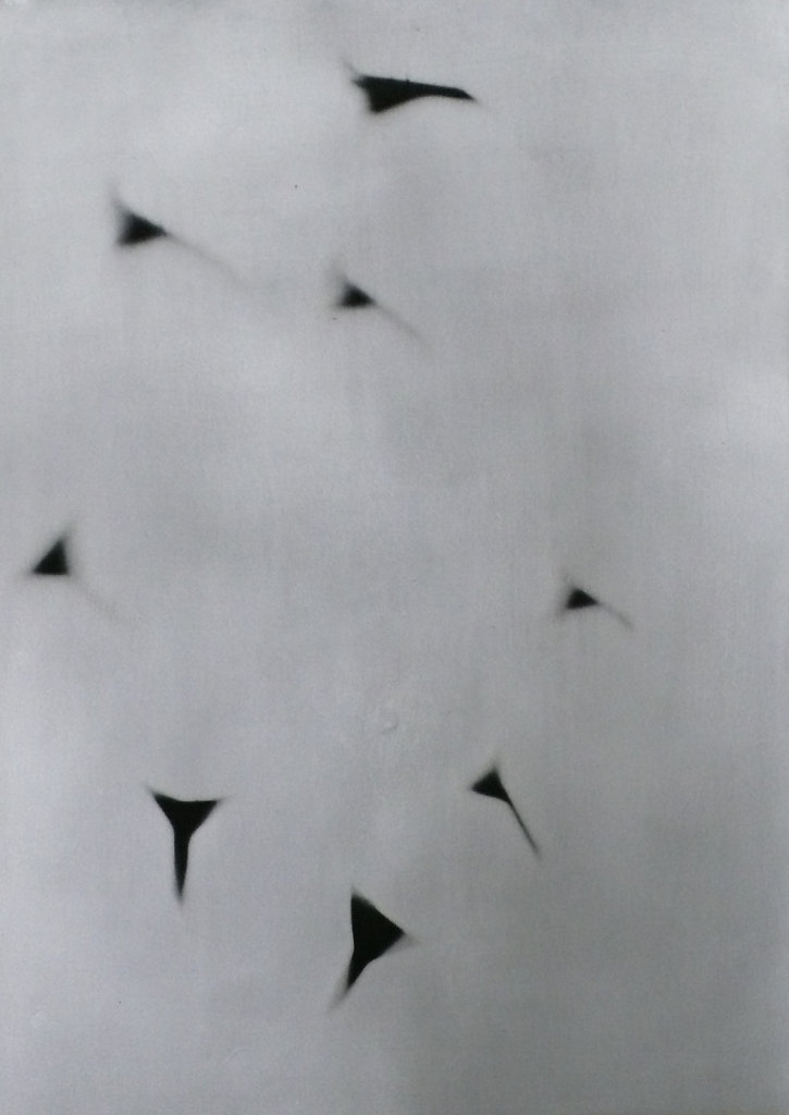 Shadow flock