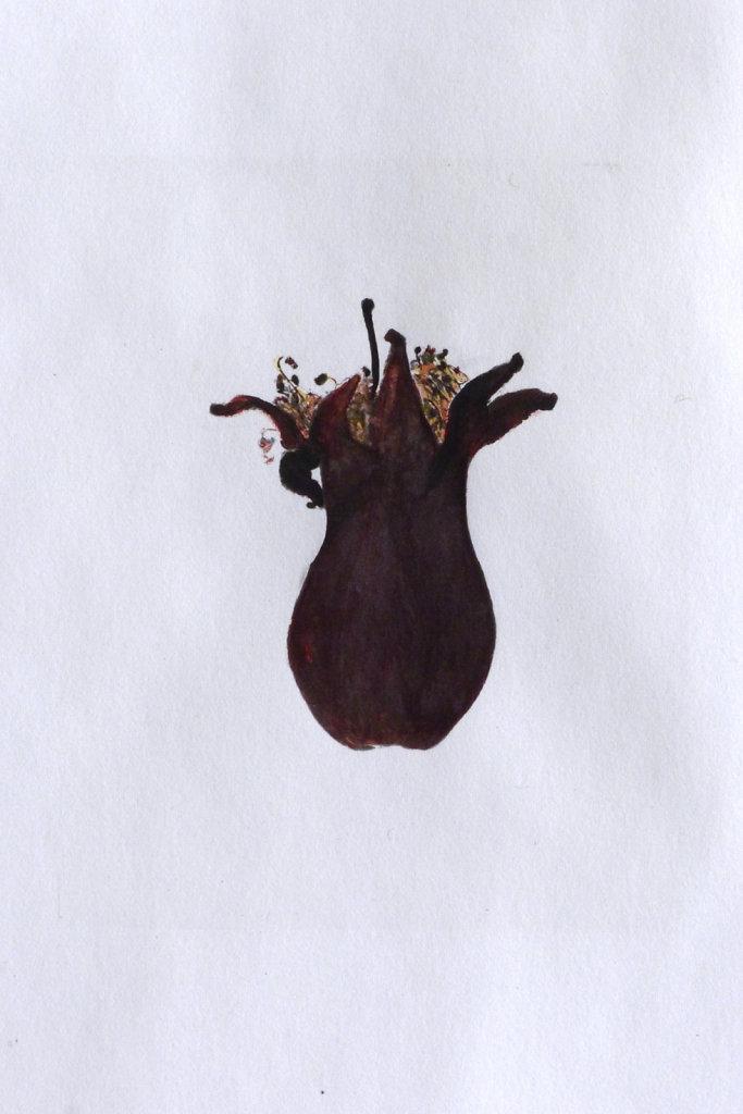 Pomegranate wer (detail), 2016.